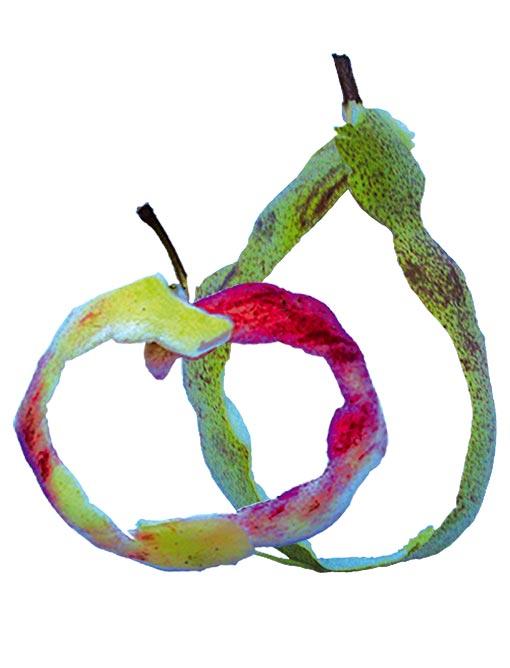 illustratie-fruithuis-appel-peer-uit-schil