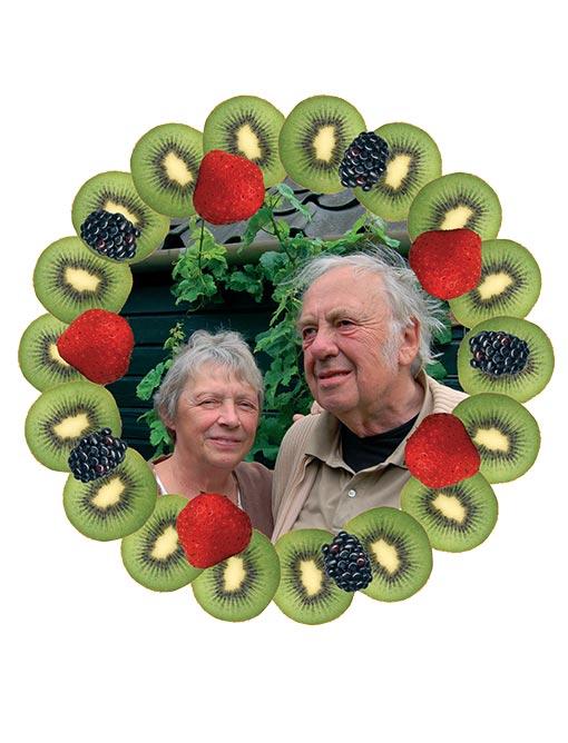 illustratie-fruithuisscherpenzeel-collage